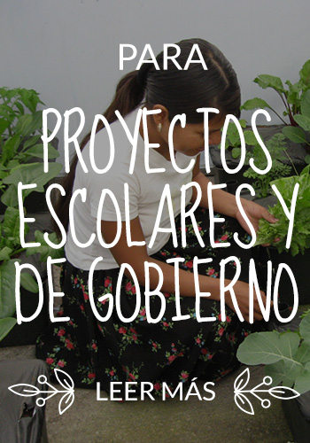 img-side-proyectos